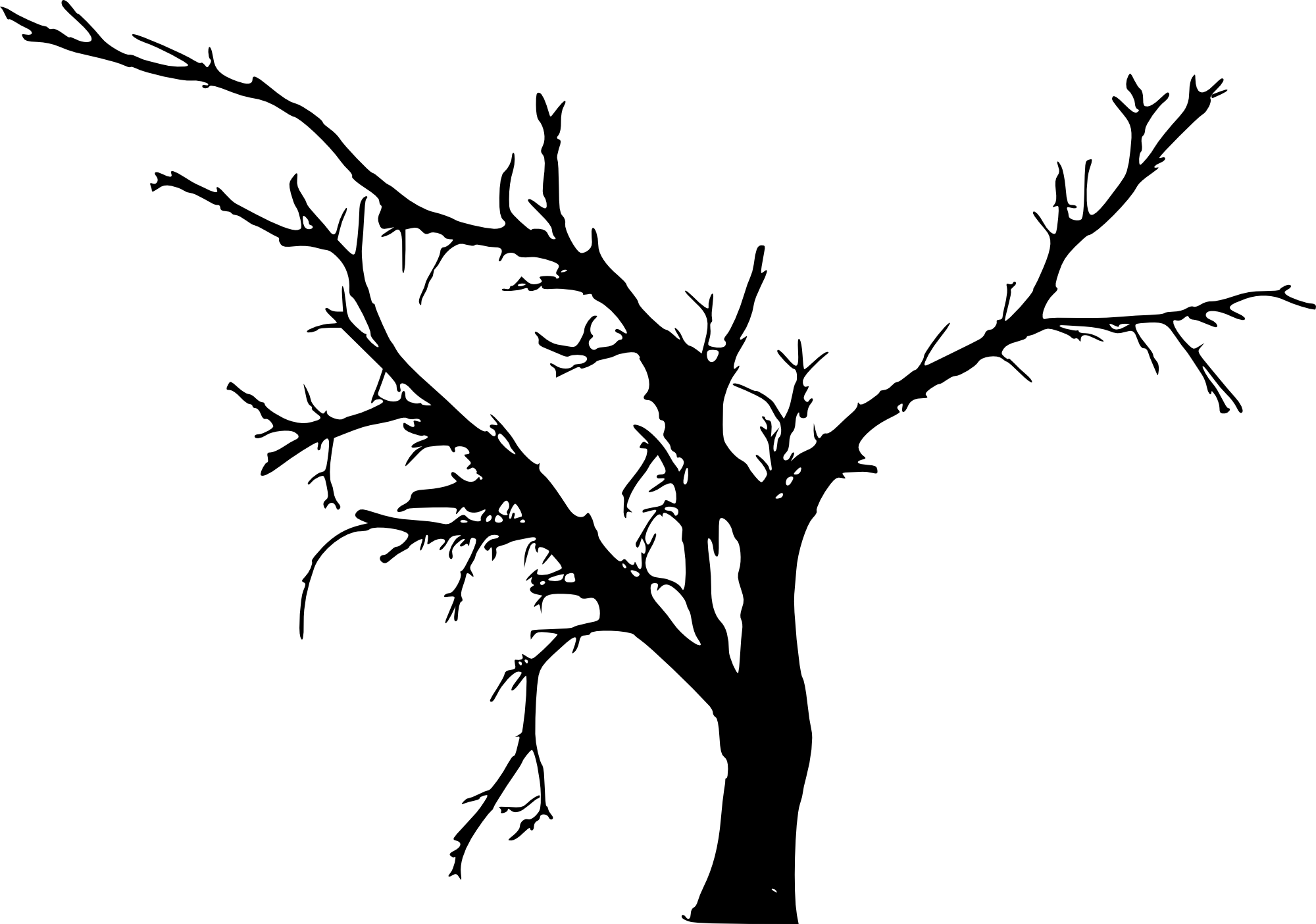 12 Simple Bare Tree Silhouettes Transparent