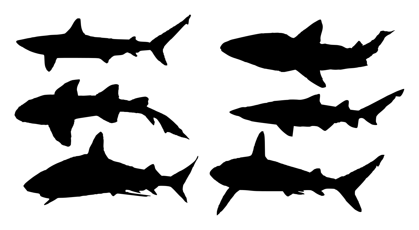 6 Shark Silhouette Transparent