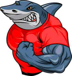 muscle shark cartoon 70172 421