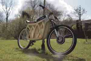 Electraply Wooden electric bicycle