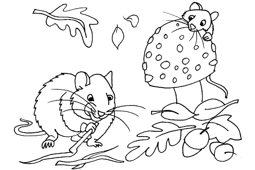 Name Autumn Pages Coloring Pages