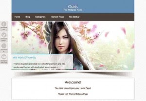 free_wordpress_theme2014