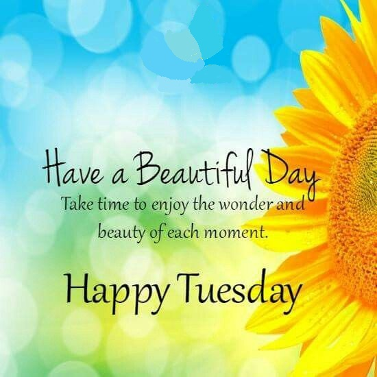 Its Tuesday Happy Tuesday F...