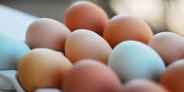 How Egg Is Good For The Skin?