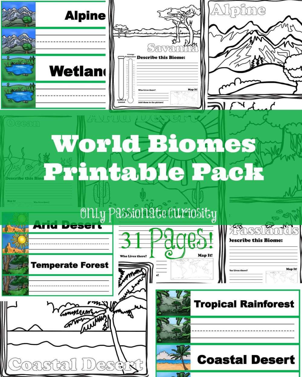 medium resolution of Worksheets On Biomes For 6th Grade   Printable Worksheets and Activities  for Teachers