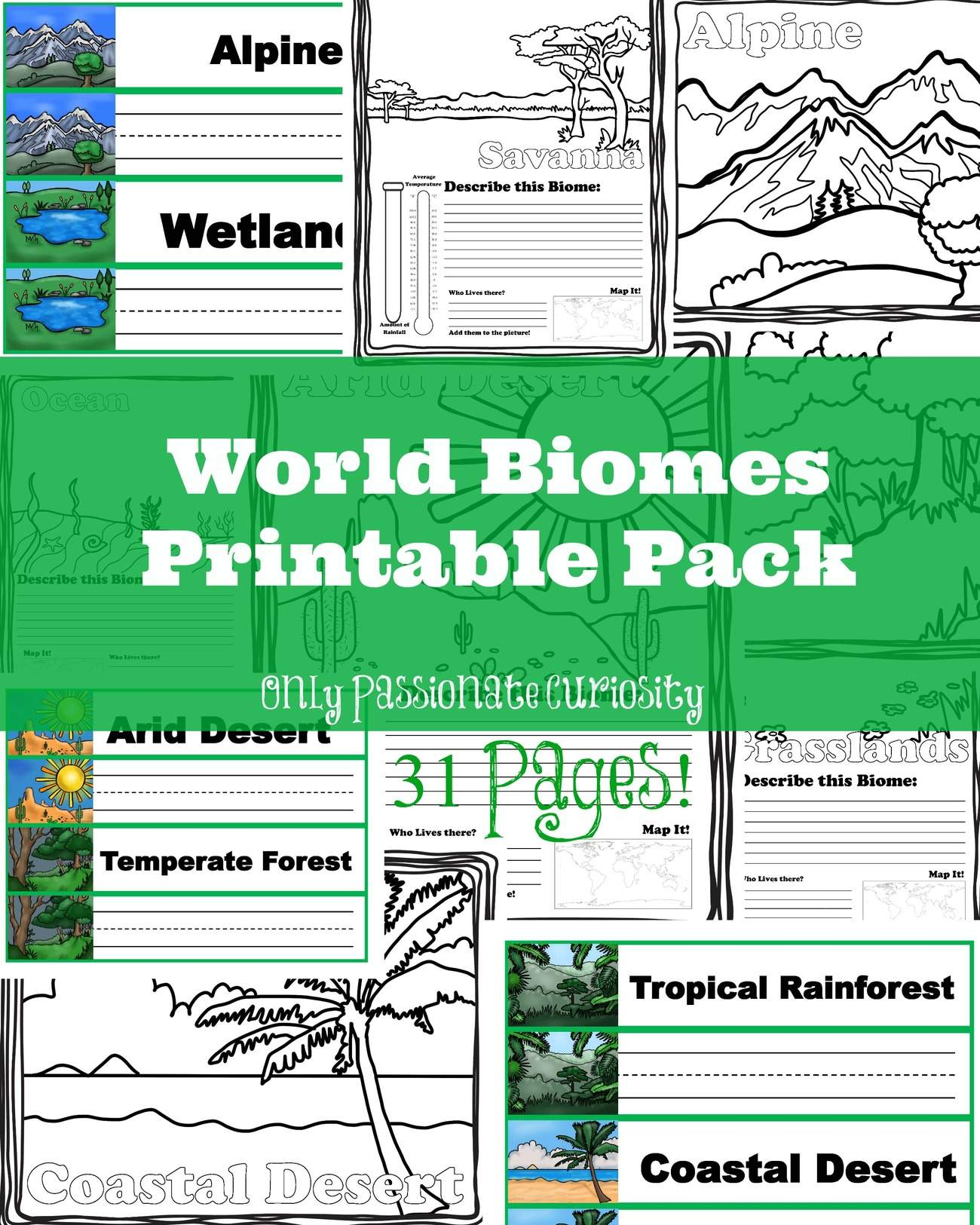 hight resolution of Worksheets On Biomes For 6th Grade   Printable Worksheets and Activities  for Teachers