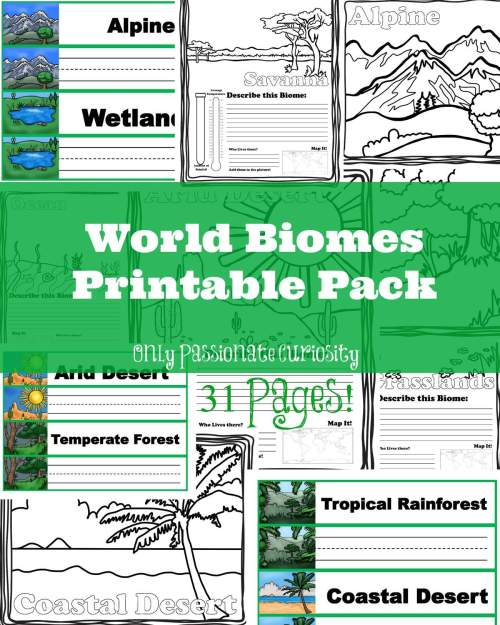 small resolution of Worksheets On Biomes For 6th Grade   Printable Worksheets and Activities  for Teachers