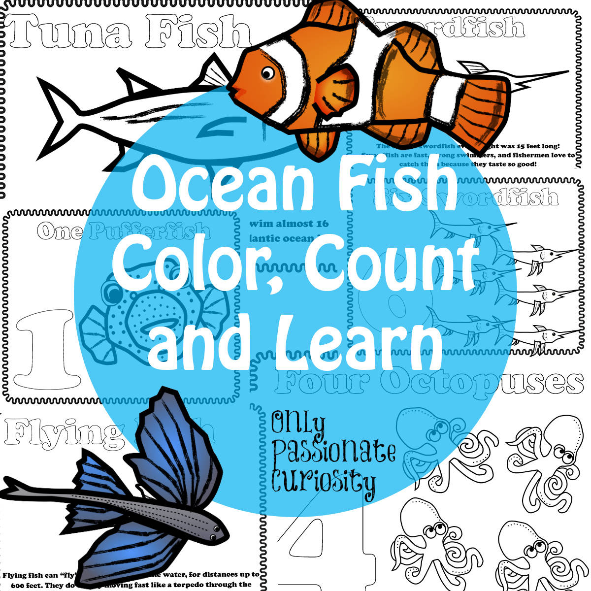 Ocean Fish Color Count And Learn Pack