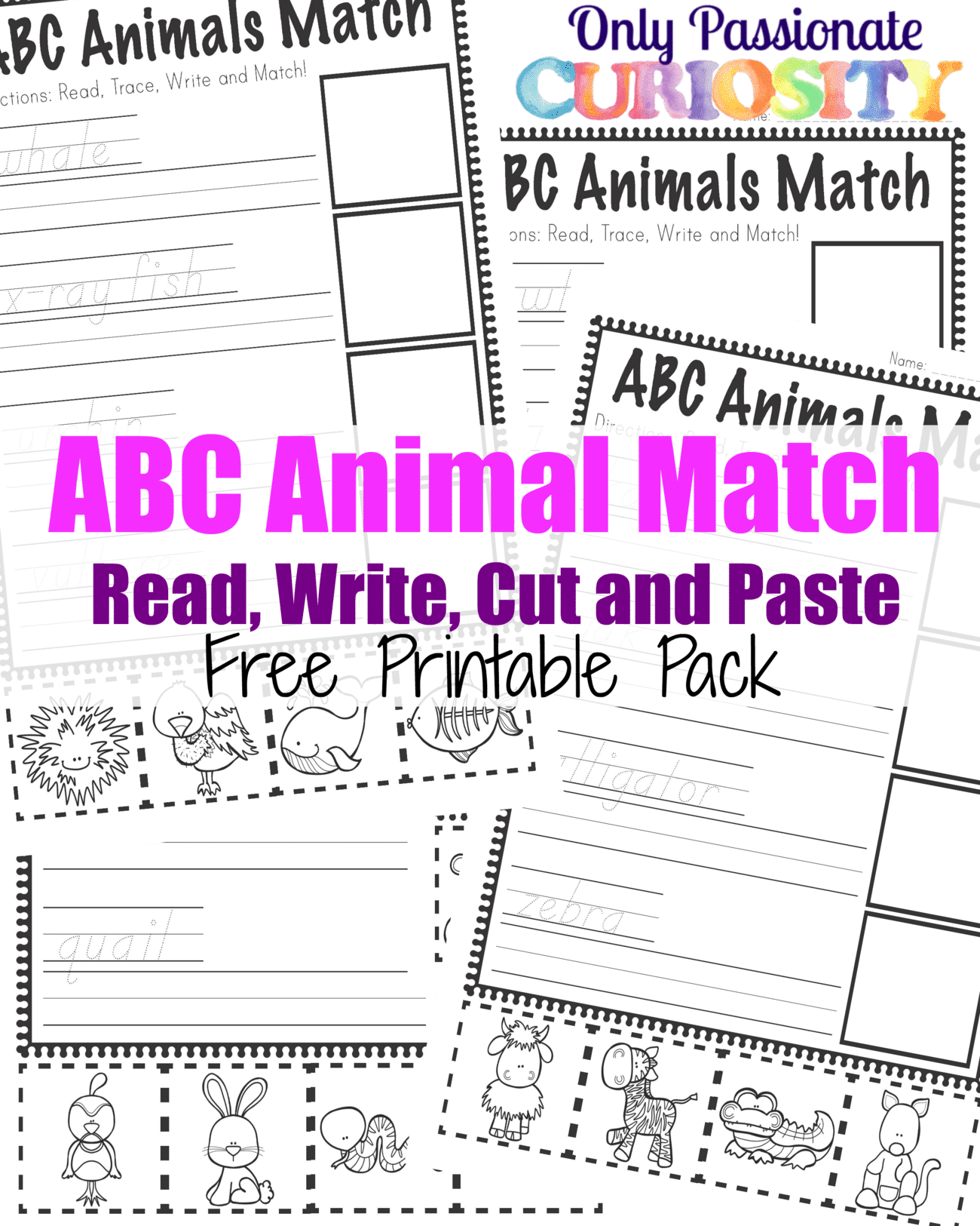 Abc Animals Read Write Cut And Paste Pack Abcs For Me Only Passionate Curiosity