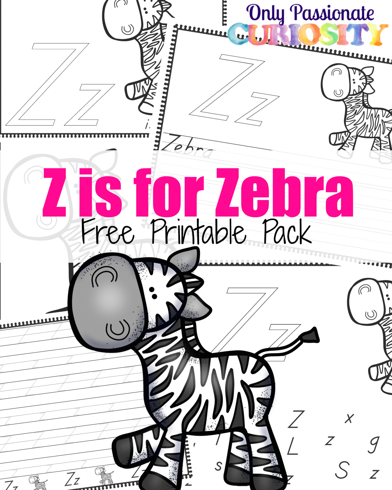Z Is For Zebra Abcs For Me Only Passionate Curiosity