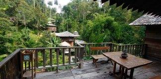 Penang Fig Tree Hill Resort