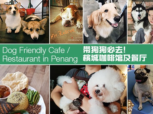 Dog Friendly Cafe and Restaurant in Penang