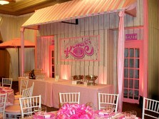 Custom Buffet Backdrops for Any Theme
