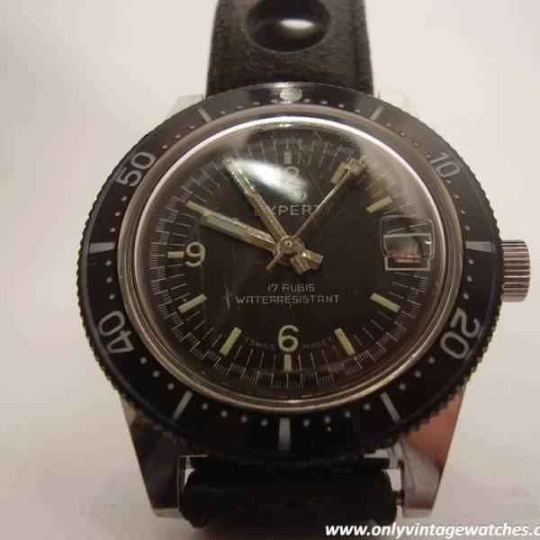 Expert divers watch 5