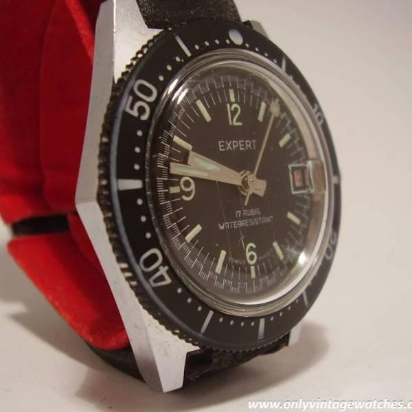 Expert divers watch 16