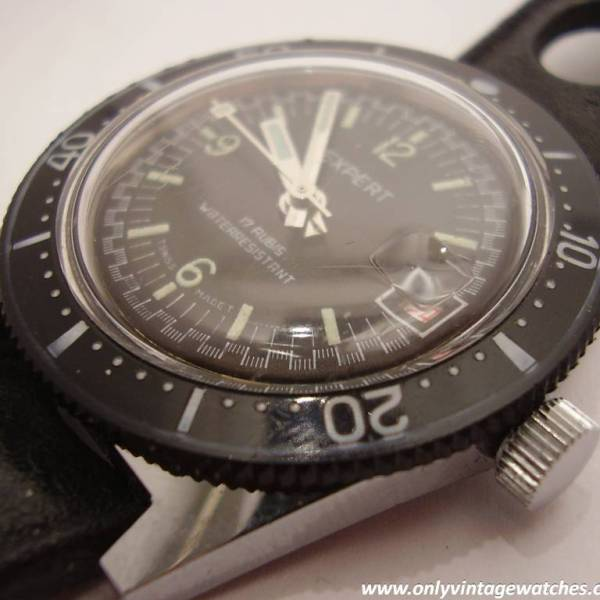 Expert divers watch 8