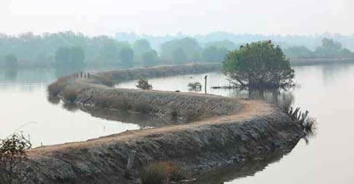 These Twin Islands Near Kochi Are A Scenic Paradise Travel Kerala Manorama English