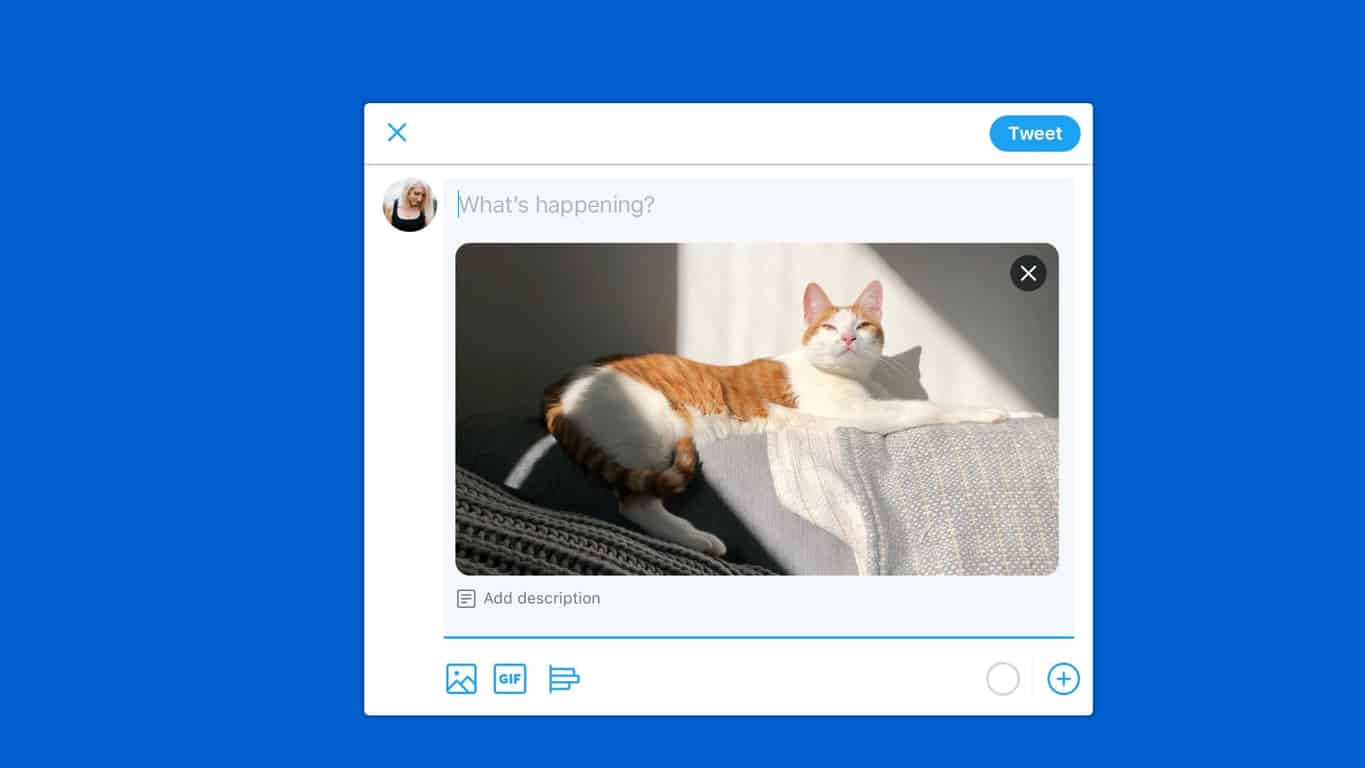 Windows 10 Twitter Progressive Web App