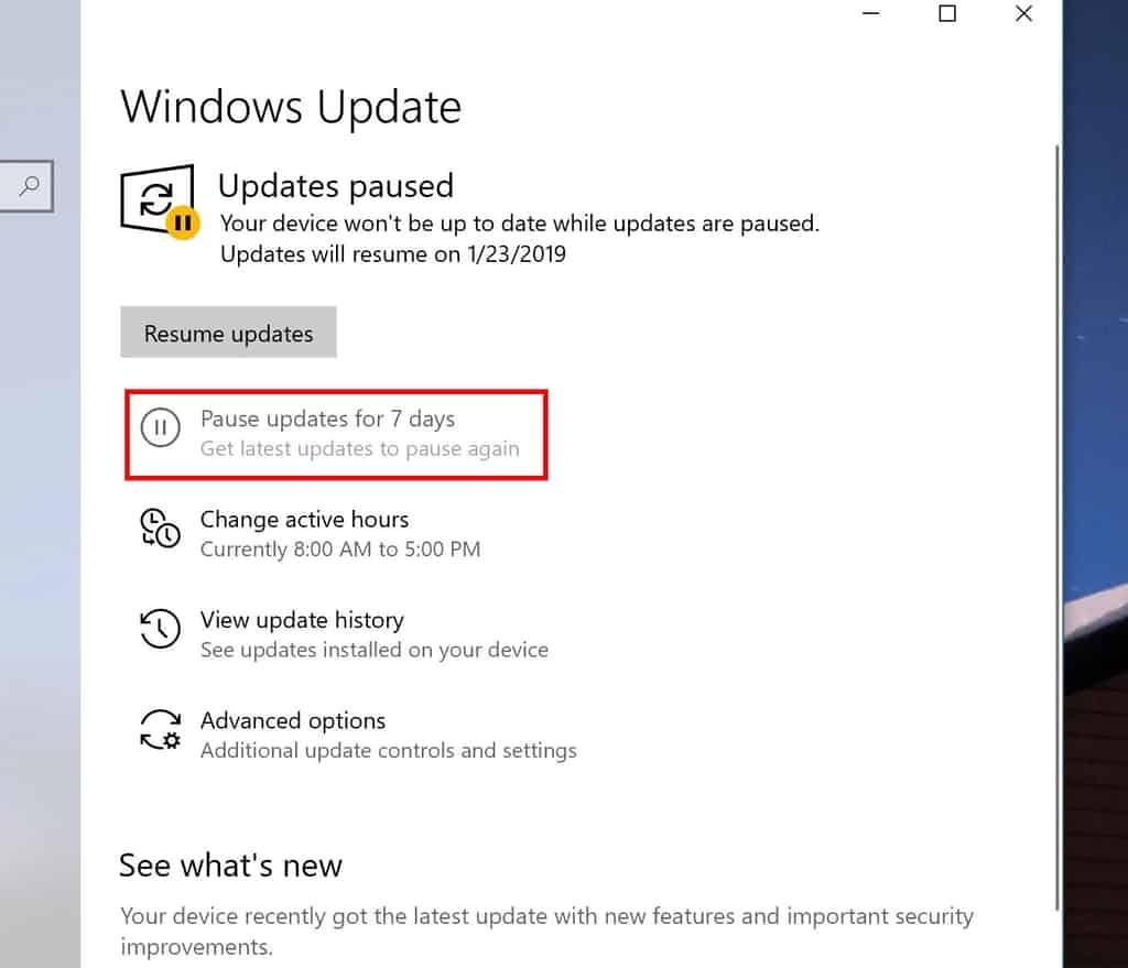 Pausing updates in Windows 10 19H1