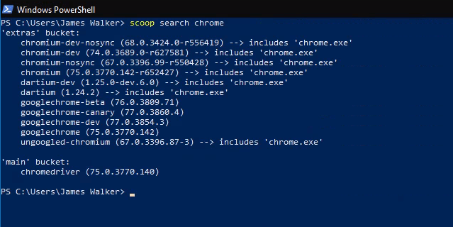 Searching for Google Chrome using scoop