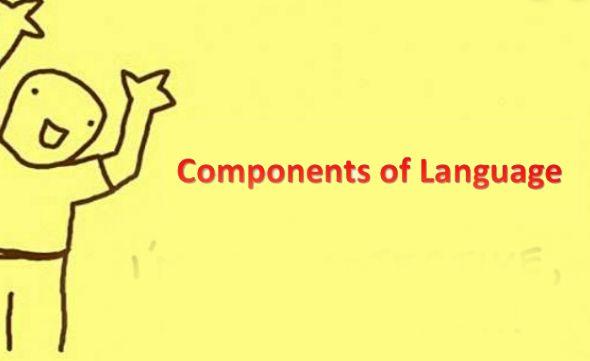 componen of language