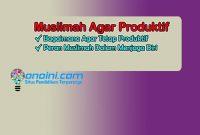 menjaga seorang muslimah agar produktif