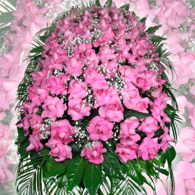 cusscino Rose rosa, Copricassa di Anthurium, copricassa di Rose rosse, Addobi floreali, Copricassa di Gerbere, Copricassa di Anthurium, cusscino Rose rosa, cusscino Anthurium Orchidee Rose, Copricassa di Rose Rosse a caduta, cuore di Rose bianche, corona di fiori, cusscino Anthurium Orchidee Rose