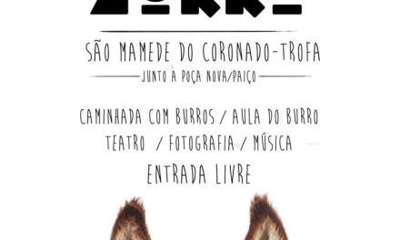 ZURRA – Festa do Burro
