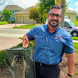 On Point Wildlife Removal expert James, removing a raccoon from a home in Brevard County, Florida.