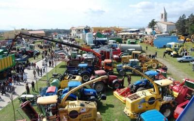 Feria de primavera de Campllong