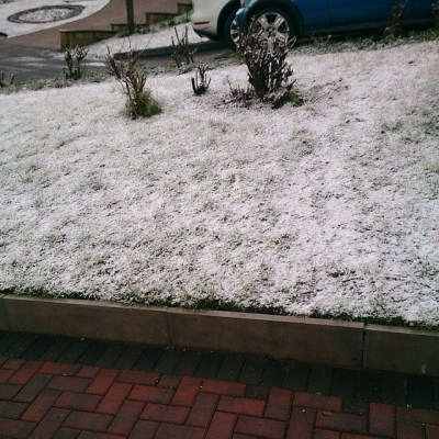 Home. Front garden under scatter but roads all clear. Traffic bad in opposite way to my travel....