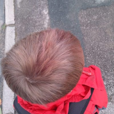 #todayistheday Sqk decided his hair needed to match his coat in colour so upended paint pot on it. #taspic