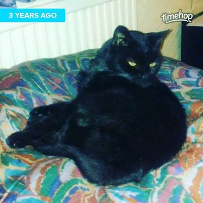 Three years exactly since my beloved Ricki had to be put to sleep. Still miss her even with a little boy bursting onto scene less than 6 months later.