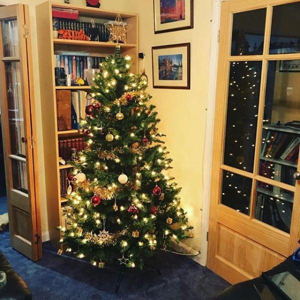 Looking like Christmas is coming ....