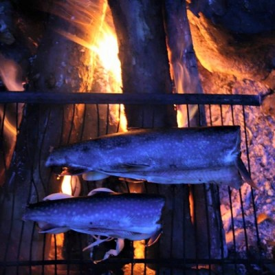 Grilled Trout - backcountry camping recipies