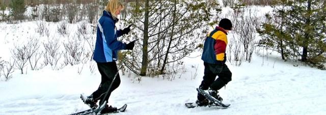 Albion Hills Snowshoeing