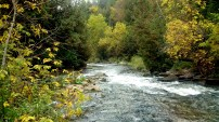 Credit River in the fall.