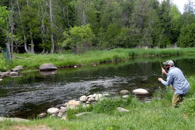Casting for Brook Trout