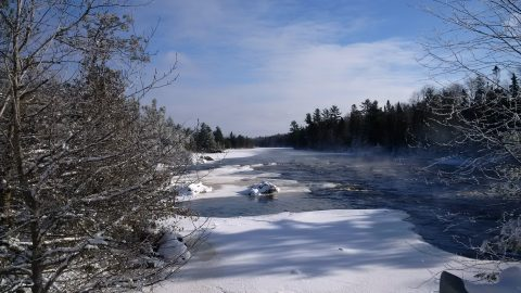 misty winter river with frost covered trees at Quetico