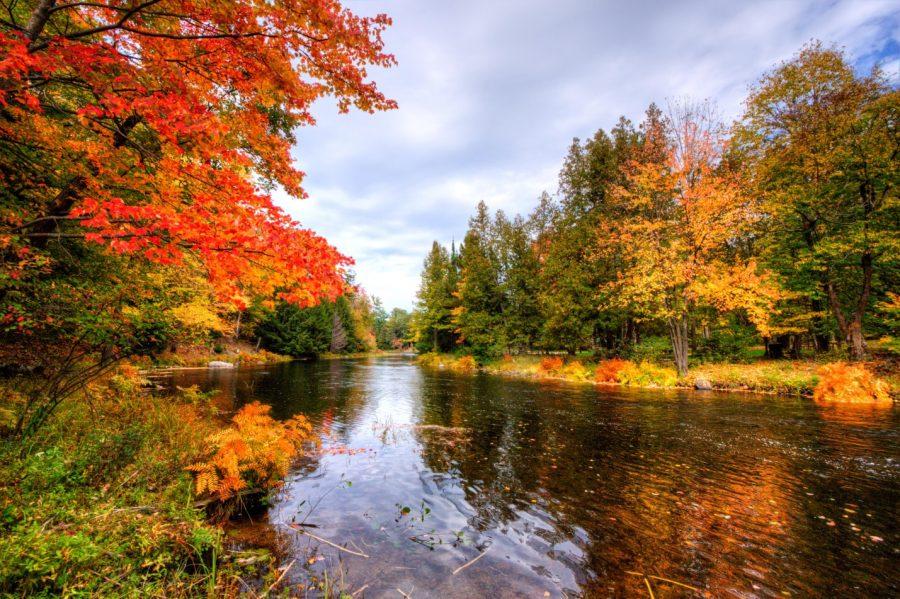 Maple Leaf Wallpaper For Fall Season Wheel Into Autumn Fall Biking At Ontario Parks