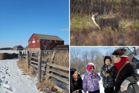 barn, coyote, program leader and kids