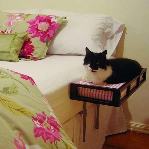 منتوجات لراحة القطط و حماية المنزل من عواقب إقتنائها ! (12)