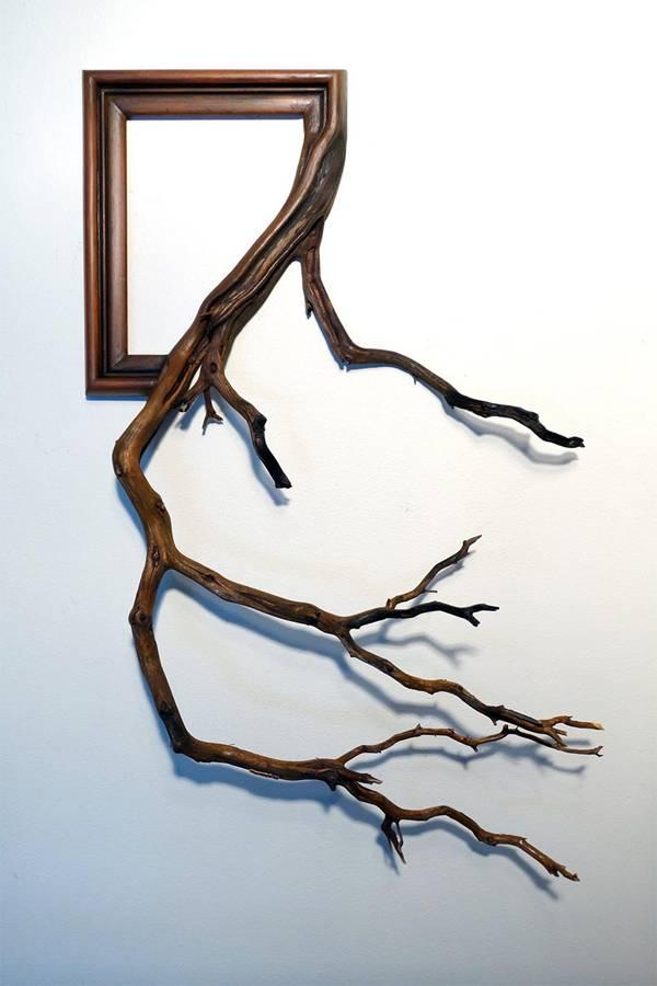 أغصان الأشجار