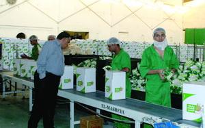 توقيع إتفاقي نسائي بين بنكيّ الطعام السعودي والتونسي