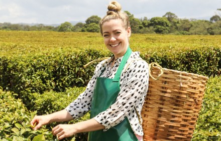 Cherry Healey, Tea