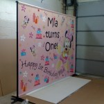 Custom 1st Birthday Party