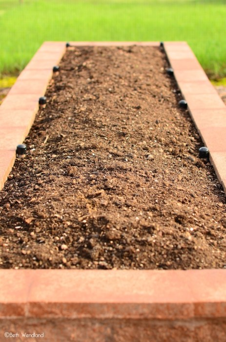 5 things you can do in your backyard garden, right now - gardening in raised beds