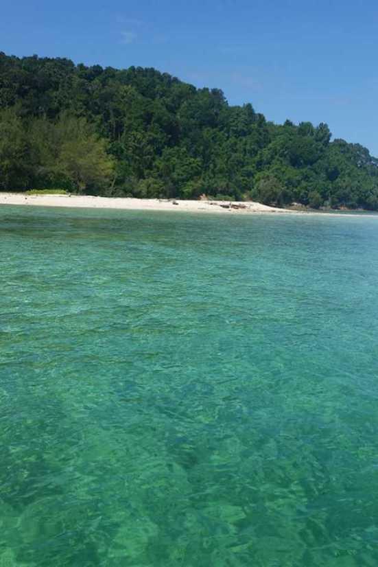 Borneo 12