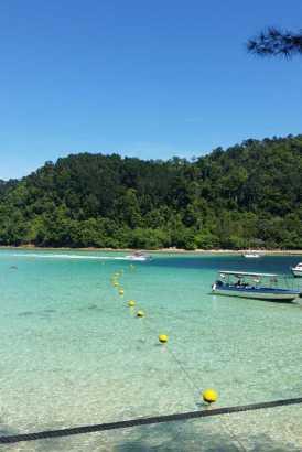 Borneo 21