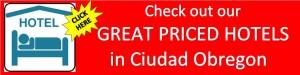 Ciudad Obregon hotels